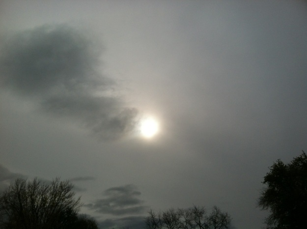 20121030-111349.jpg